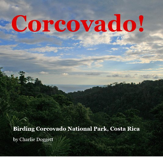 View Corcovado! by Charlie Doggett