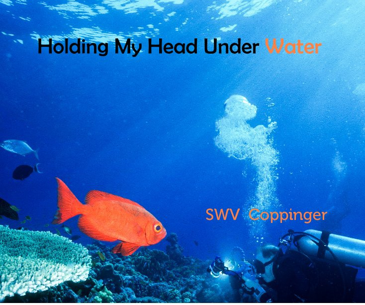 View Holding My Head Under Water by SWV Coppinger
