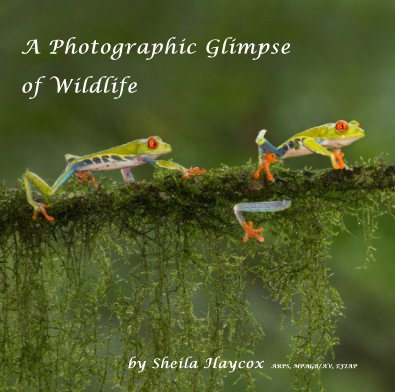 A Photographic Glimpse of Wildlife - Fine Art Photography photo book