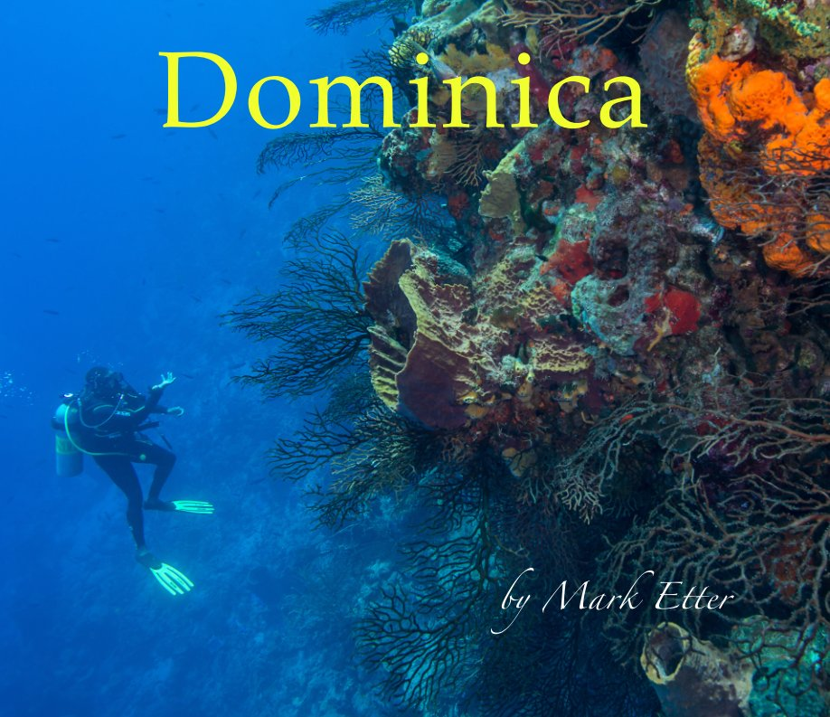 View Dominica 2017 by Mark Etter