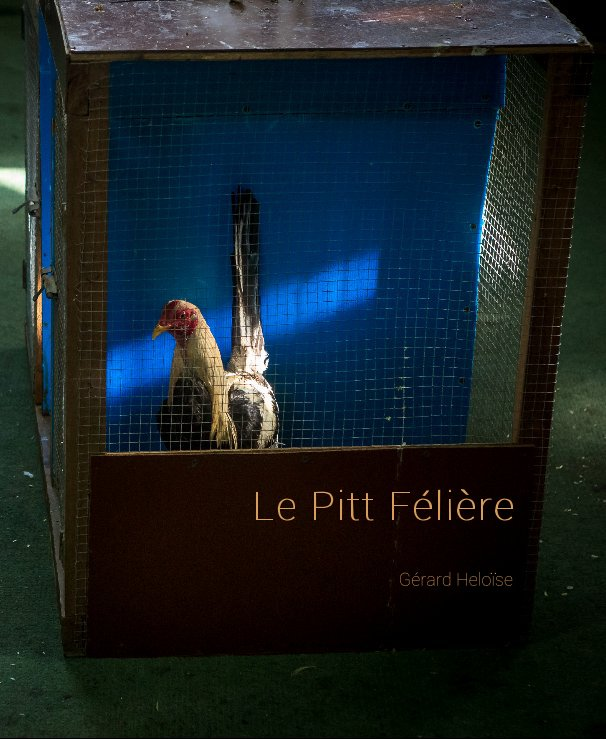 Bekijk Le Pitt Félière op Gérard Heloïse
