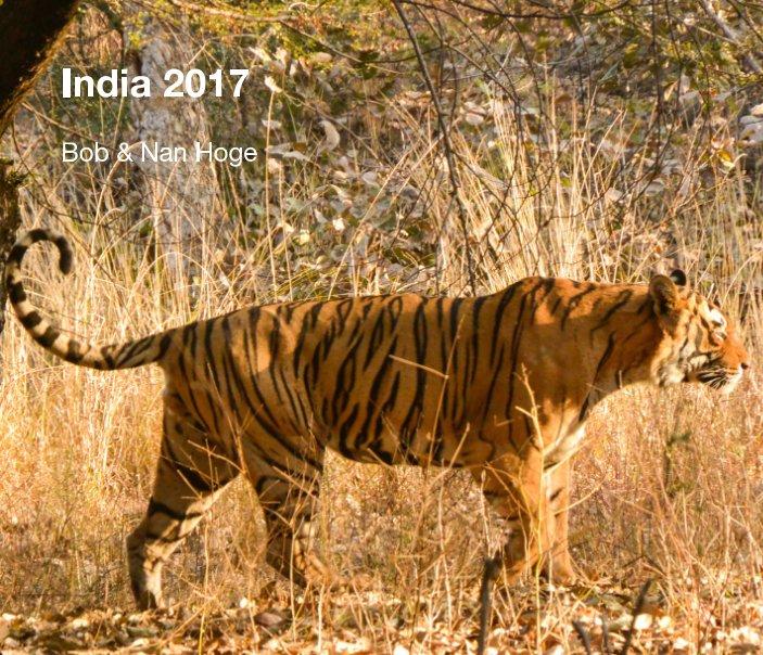 View India 2017 by Bob & Nan Hoge