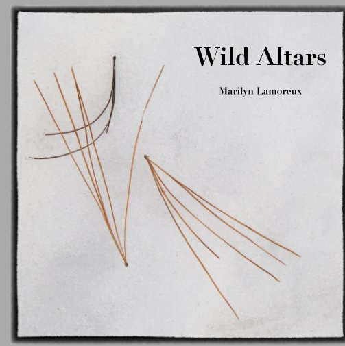 View Wild Altars by Marilyn Lamoreux