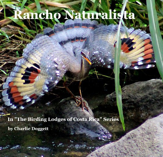 View Rancho Naturalista by Charlie Doggett