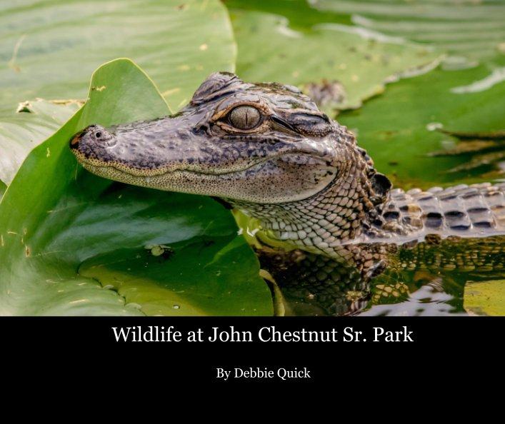 View Wildlife at John Chestnut Sr. Park by Debbie Quick