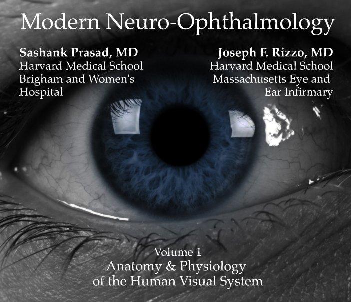 Modern Neuro Ophthalmology Anatomy Physiology Of The Human Visual