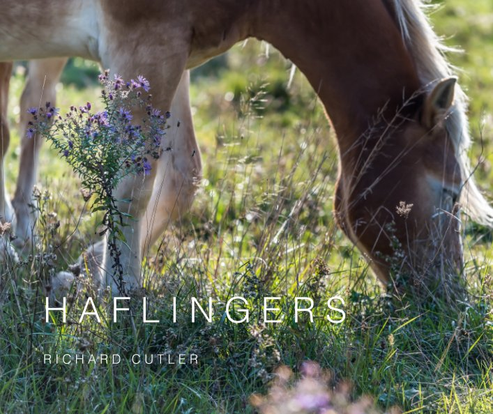 View HAFLINGERS by RICHARD CUTLER