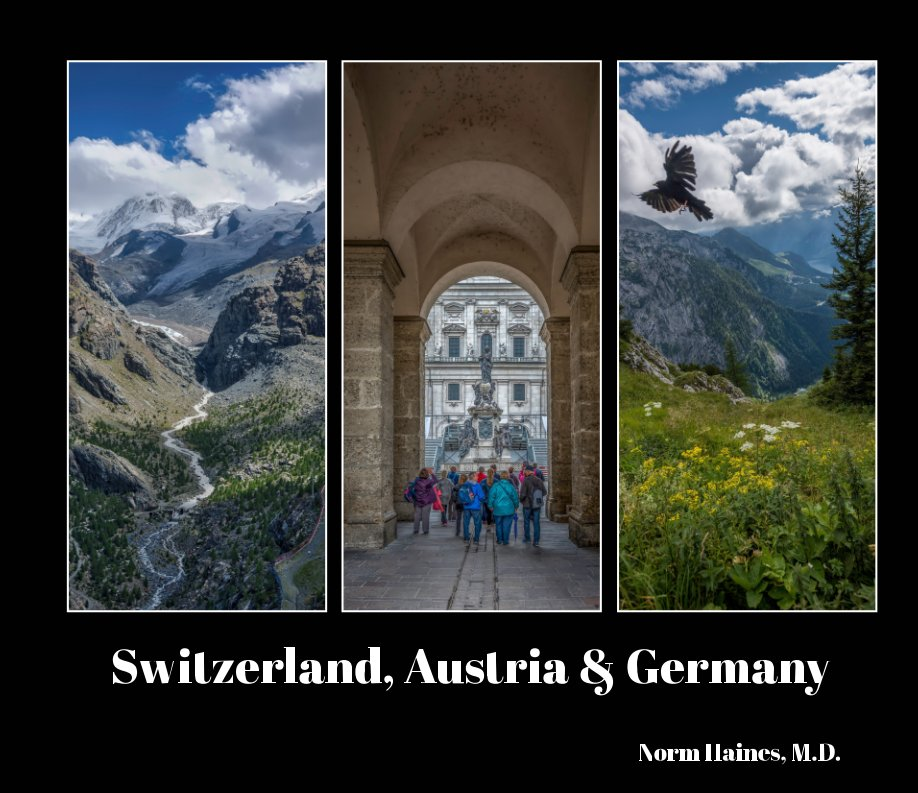 View Switzerland, Austria & Germany by Norm Haines MD