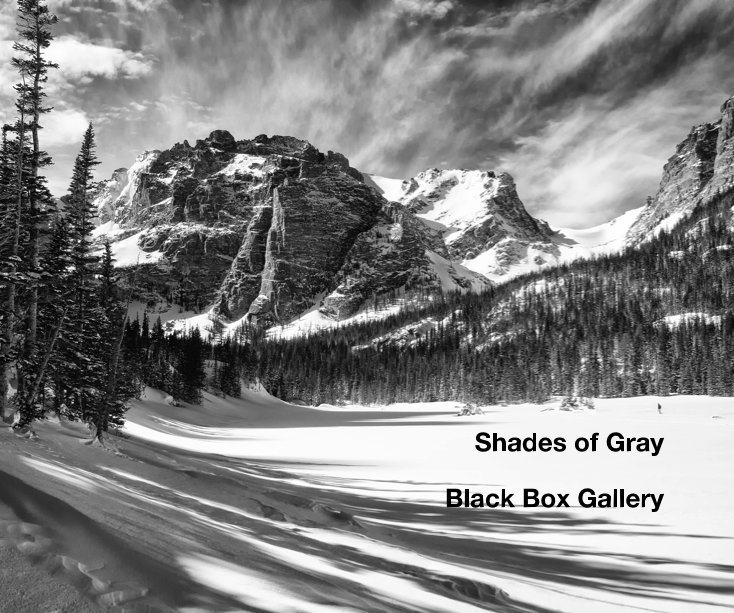 View Shades of Gray by Black Box Gallery
