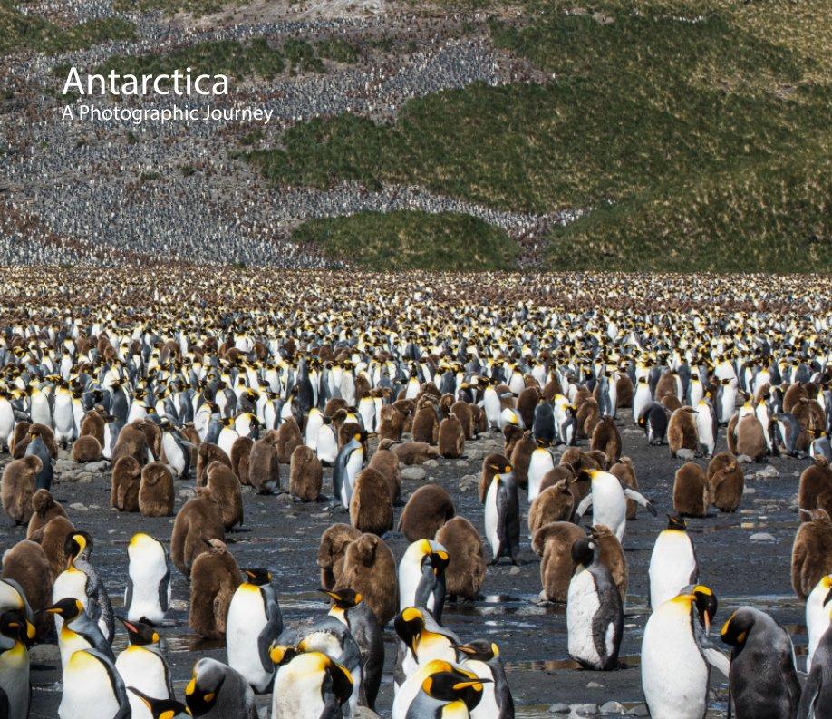View Antarctica by John B. Kahan