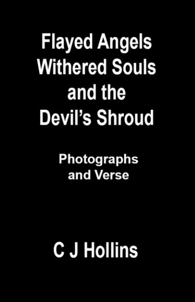 View Flayed Angels, Withered Souls, and the Devil's Shroud by C J Hollins