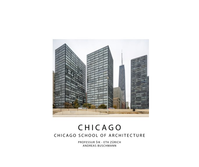 View Chicago by Andreas Buschmann