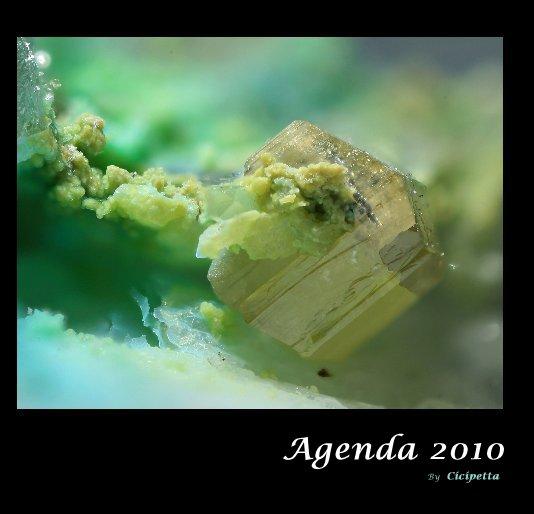 View Agenda 2010 by Cicipetta