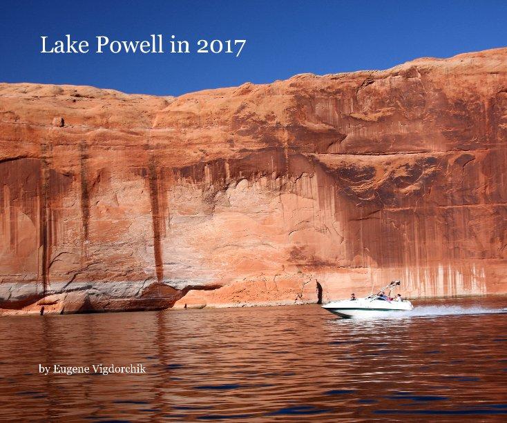 Ver Lake Powell in 2017 por Eugene Vigdorchik
