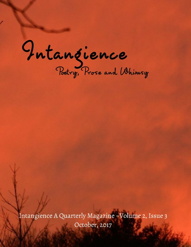 View Intangience: A Quarterly Magazine Volume 2, Issue 3 by M. Kari Barr