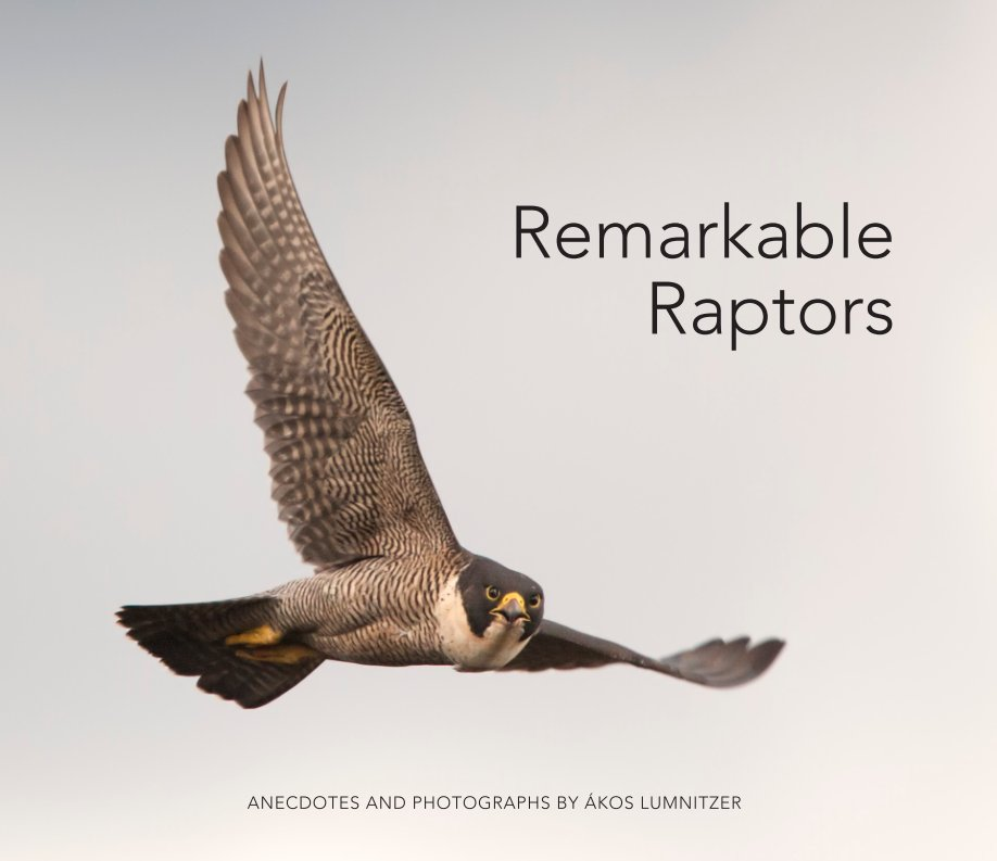 View Remarkable Raptors - Hardcover LRG by Ákos Lumnitzer