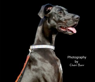 Photography by Cheri Barr - Arts & Photography Books photo book