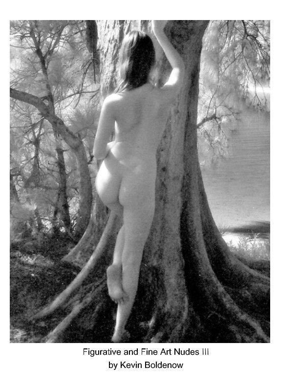 Ver Figurative and Fine Art Nudes III por Kevin Boldenow
