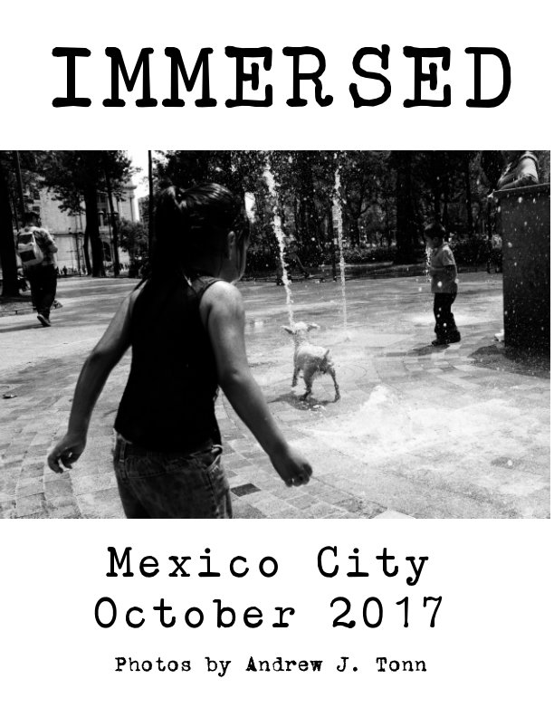 View Immersed: Mexico City 2017 by Andrew J. Tonn