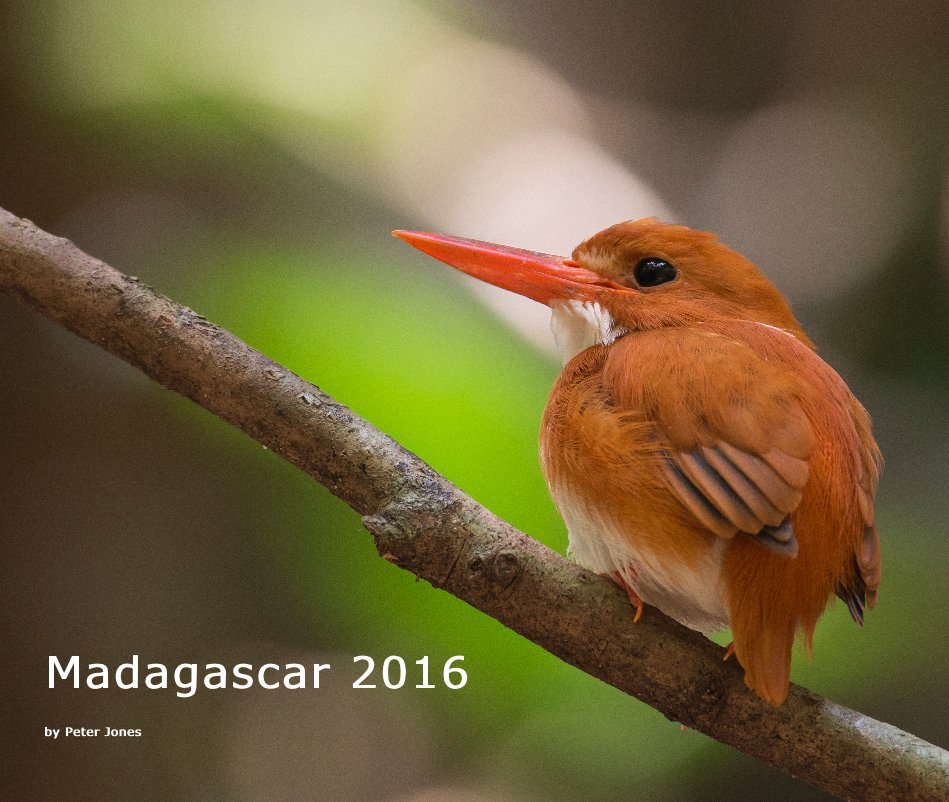 View Madagascar 2016 by Peter Jones