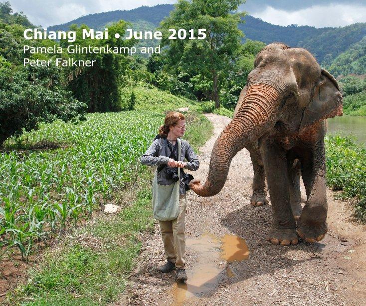 View Chiang Mai • June 2015 by P Glintenkamp and P Falkner