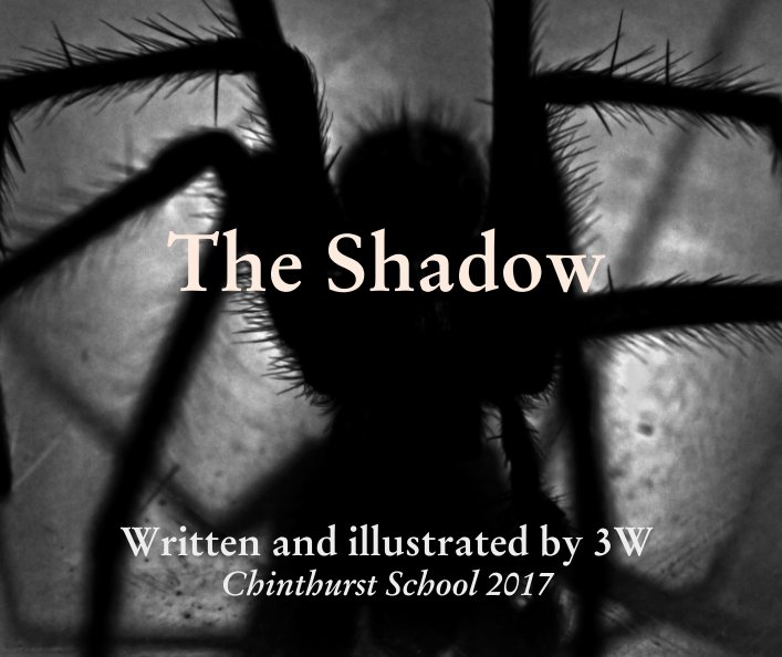 View The Shadow by Written and illustrated by 3W
