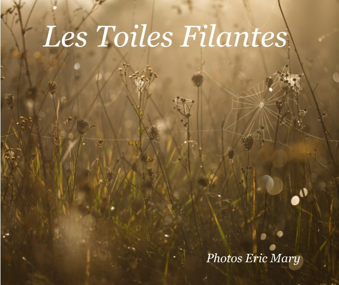 View Les Toiles Filantes by Eric Mary