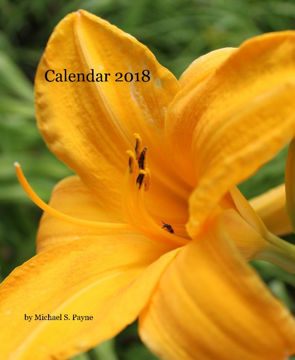 View Calendar 2018 by Michael S. Payne