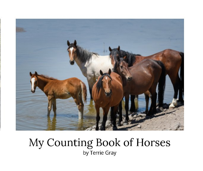 View My Counting Book of Horses by Terrie Gray