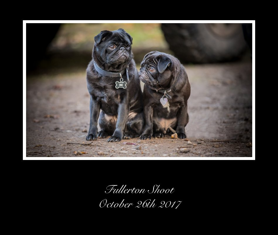 View Fullerton Shoot October 26th 2017 by dean mortimer