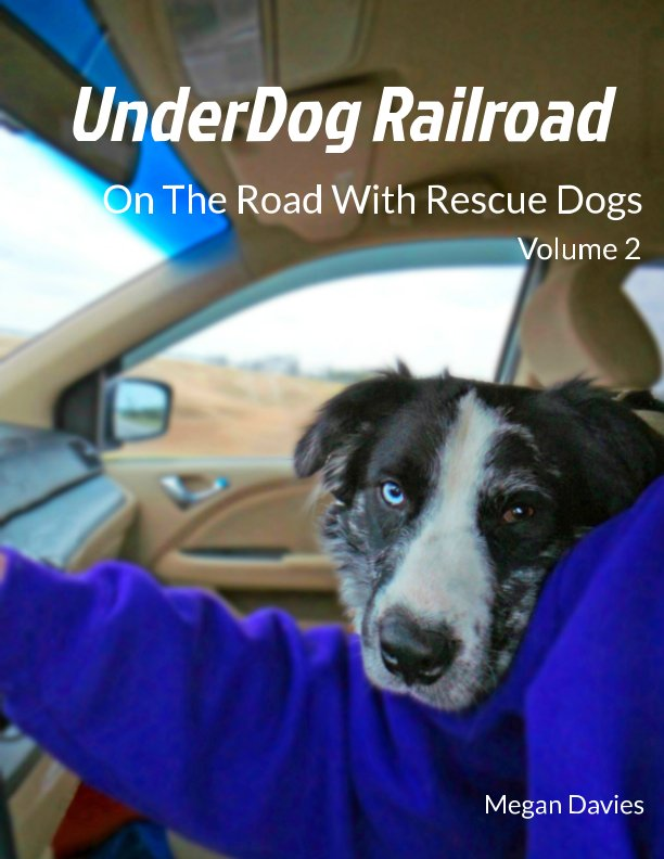 View UnderDog Railroad Vol.2 by Megan Davies