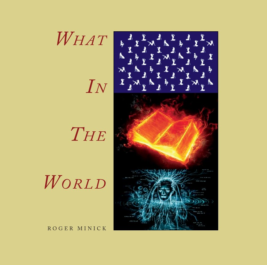 View WHAT IN THE WORLD by Roger Minick