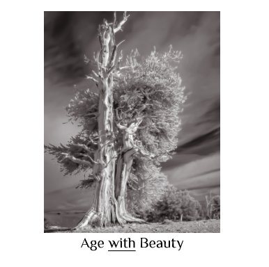 Age with Beauty - Arts & Photography Books photo book