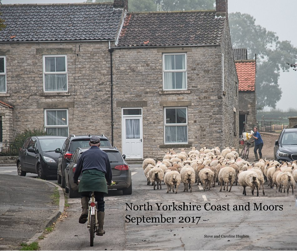 View North Yorkshire Coast and Moors September 2017 by Steve and Caroline Hughes