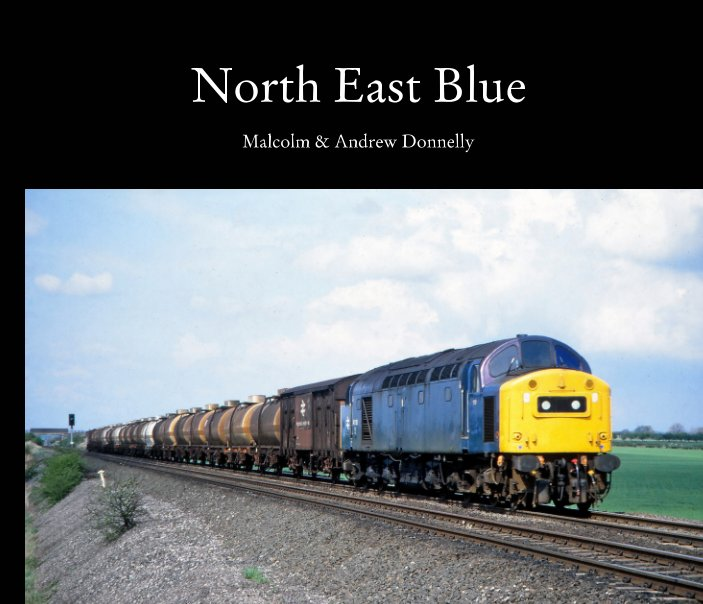 View North East Blue by Malcolm and Andrew Donnelly