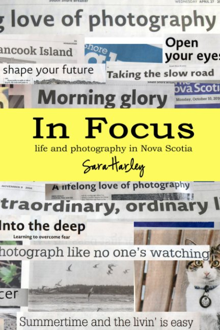 View In Focus by Sara Harley