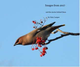 Images from 2017 - Fine Art Photography photo book
