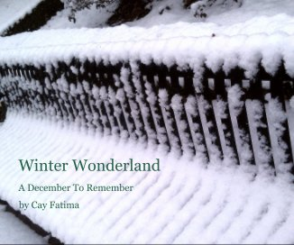 Winter Wonderland - Arts & Photography Books photo book