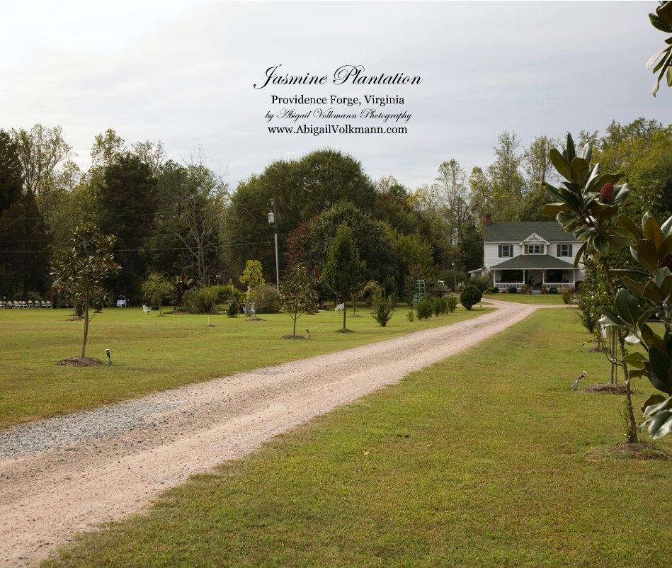 View Jasmine Plantation Providence Forge, Virginia by Abigail Volkmann Photography www.AbigailVolkmann.com by abs9980