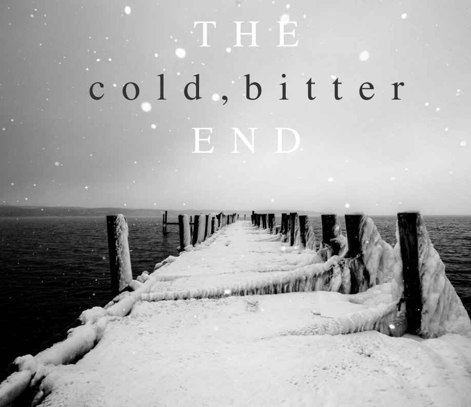 View The Cold Bitter End Montauk N.Y. 11954 by James Katsipis