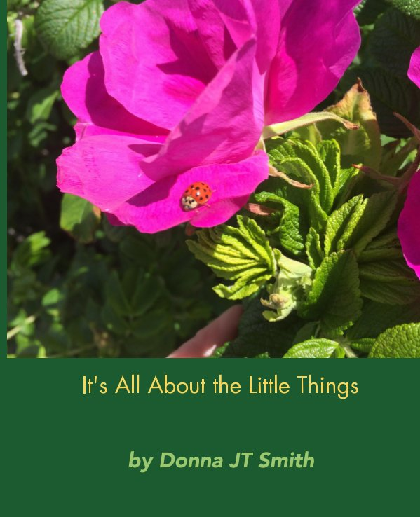 Ver It's All About the Little Things por Donna JT Smith