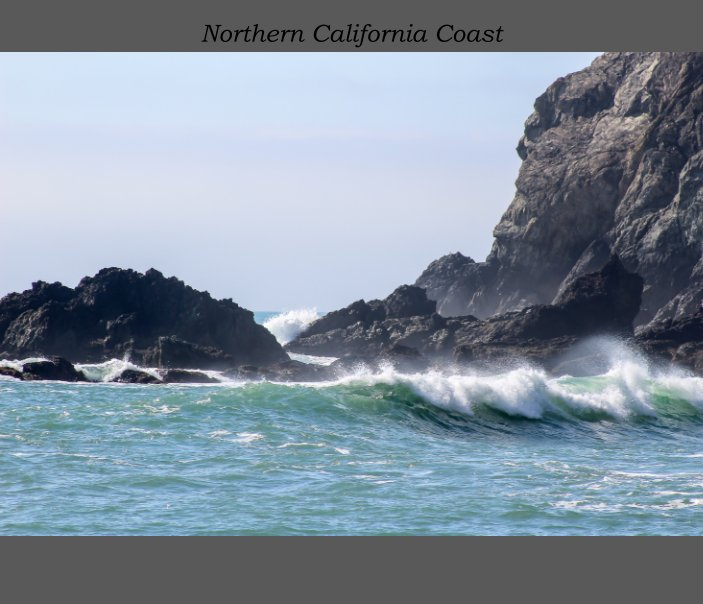 View Northern California Coast by Jeffrey Casino