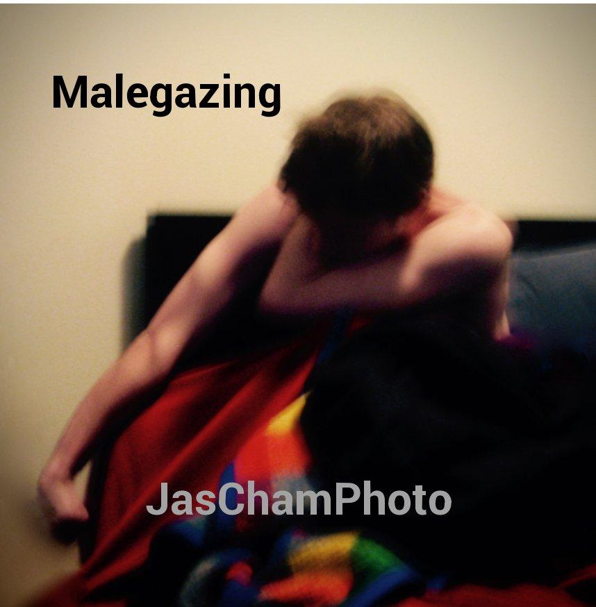 Bekijk Malegazing op JasChamPhoto
