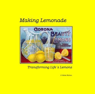 Making Lemonade - Biographies & Memoirs photo book
