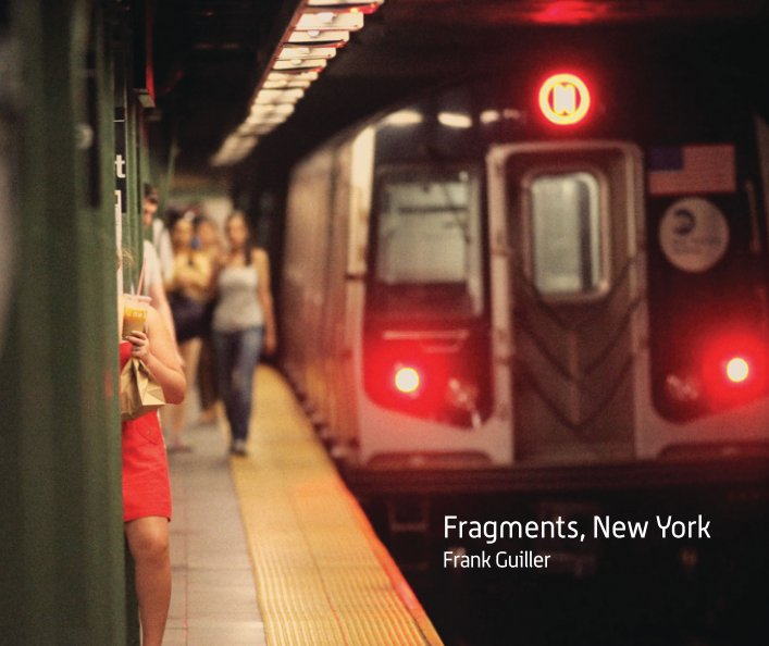 View Fragments, New York by Frank Guiller
