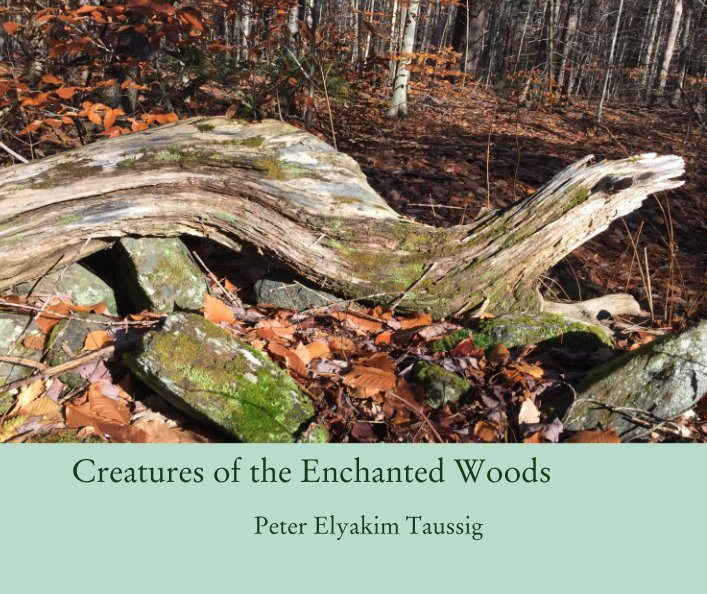 View Creatures of the Enchanted Woods by Peter Elyakim Taussig
