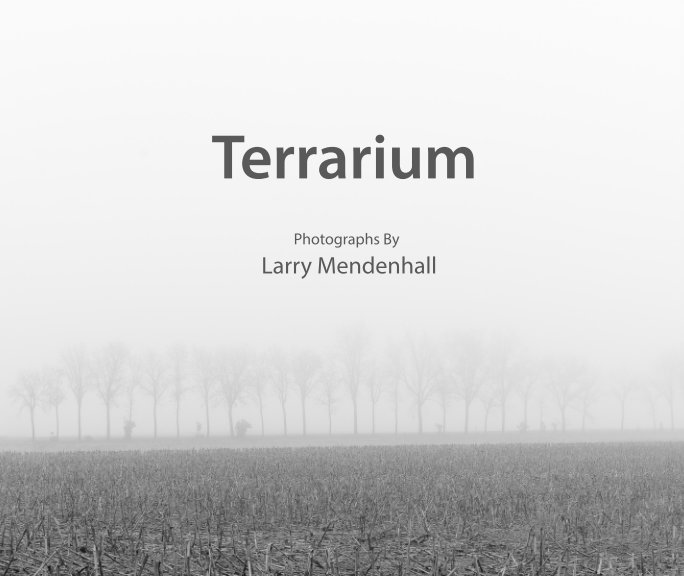 View Terrarium by Larry Mendenhall