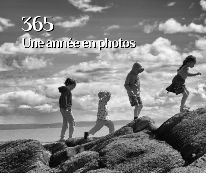 View Défi 365 Une année en photos by Marc L. Guénette