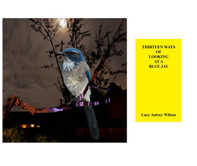 View Thirteen Ways of Looking at a Blue Jay by Lucy Autrey Wilson