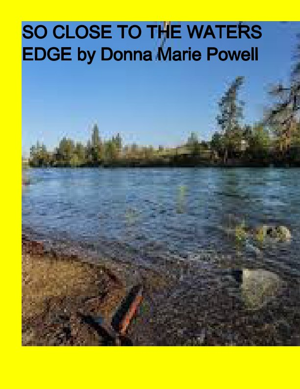 View So Close to the Waters by Donna Marie Powell